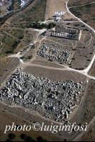 i templi G, F ed E  - Selinunte (5208 clic)