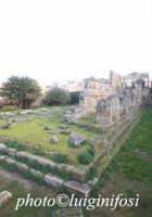 tempio di apollo  - Siracusa (2209 clic)