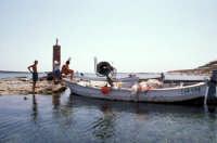 al ritorno dalla pesca  - Portopalo di capo passero (5049 clic)