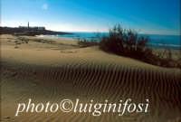 le dune della spiaggia di C.da Pisciotto  - Sampieri (9788 clic)