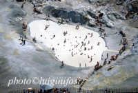 i fanghi sulfurei  - Vulcano (7349 clic)