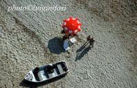 ...sopra una spiaggia  - Mazara del vallo (5593 clic)