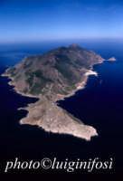 l'isola di marettimo in una veduta aerea  - Marettimo (4612 clic)