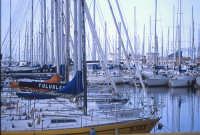 il porto turistico della cala PALERMO Luigi Nifosì