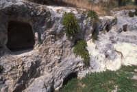 tombe preistoriche  - Caltabellotta (2578 clic)
