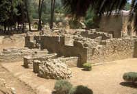 la villa romana del casale: esterno  - Piazza armerina (3343 clic)