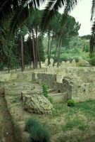 la villa romana del casale: esterno  - Piazza armerina (3075 clic)