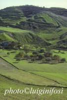 tipico paesaggio ibleo  - Giarratana (2806 clic)