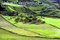 tipico paesaggio ibleo  - Giarratana (3090 clic)