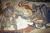 i mosaici della villa romana: scena dalla grande caccia  - Piazza armerina (8499 clic)