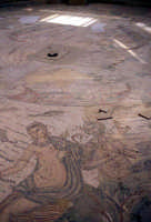 i mosaici della villa romana  - Piazza armerina (3201 clic)