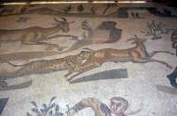 i mosaici della villa romana: scena della piccola caccia  - Piazza armerina (5130 clic)