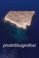 l'isola di lampione in una veduta aerea  - Lampione (11973 clic)
