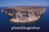 la costa a picco di capo ponente   - Lampedusa (5864 clic)