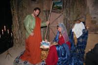 Sagra della Cuccia 2007 - Natività  - San michele di ganzaria (3019 clic)