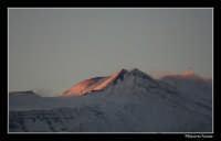 Etna vista da Acireale  - Acireale (2480 clic)