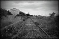 Antica Ferrovia dismessa  - Marina di noto (8512 clic)