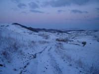 Neve a Mineo (CT) 7 Marzo 2006. La foto inquadra il bosco di Marineo imbiancato in territorio di Mineo.  - Mineo (5180 clic)