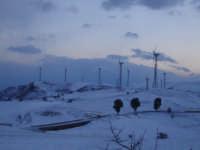 Neve a Mineo (CT) 7 Marzo 2006. Parco eolico Contrada Cerasella.  - Mineo (9845 clic)