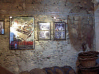 La casa del nespolo  - Aci trezza (7436 clic)