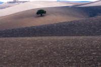 paesaggio ottbrino  - Aidone (3352 clic)
