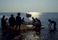 foce del simeto: pescatori di novellame  - Catania (2687 clic)