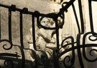 balcone barocco  - Militello in val di catania (2805 clic)