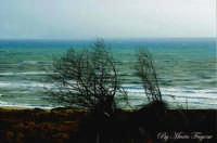 Mare mosso  - Scoglitti (5638 clic)