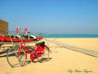 Bici rossa  - Scoglitti (5993 clic)