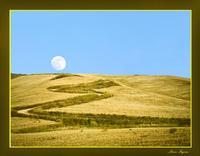 Quattro stagioni. Summer: moon way  - Agira (3732 clic)