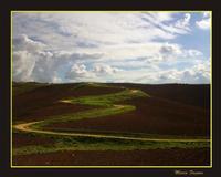 Quattro stagioni. Autumn: moon way  - Agira (3576 clic)