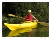 Il lago Pozzillo da la possibilità a canoisti e ad amanti dello sport all'aperto di praticare l'attività in una natura rigogliosa, incontaminata e silenziosa.  - Lago di pozzillo (6152 clic)