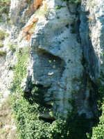 Cava Ispica - Volto di Cristo  - Ispica (2458 clic)