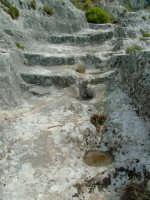 Cava Ispica  - Ispica (1750 clic)