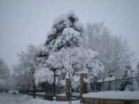 Nevicata in Villa Chalet   - Mistretta (6725 clic)