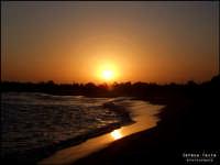 oasi del simeto  - Vaccarizzo (6417 clic)