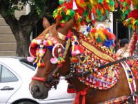 mulo parato festivita di s. angelo  - Licata (4359 clic)
