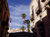 palme e cielo azzurro nel centro storico  - Sciacca (3286 clic)