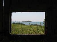 scorcio  - Isola delle correnti (3868 clic)