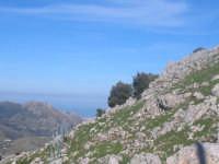 Panorama da monte gradara verso palermo  BORGETTO Roberto Romano