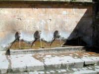 Fonte Canali  - Piazza armerina (5776 clic)