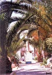 Parco delle rimembranze  - Campobello di licata (3645 clic)