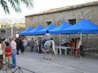FESTEGGIAMENTI IN ONORE A SAN CARLO BORROMEO  DAL 7 AL 10 AGOSTO 2009  SFILATA DI CAVALLI  - San carlo di chiusa sclafani (3920 clic)
