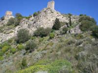 i ruderi del castello saraceno   - San carlo di chiusa sclafani (4814 clic)