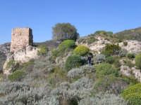 i ruderi del castello saraceno   - San carlo di chiusa sclafani (5609 clic)