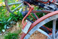Quando la vita era fatta di lenti passi. . .  Ruota di un antichissimo carro agricolo, utilizzato all'inizio del XIX°secolo, con particolare freno a tampone di legno . .   - Ficuzza (4054 clic)