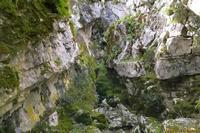 Sentiero Valle San Giorgio... Sentiero Valle San Giorgio all'estremità ovest del bosco di Ficuzza . . .   - Ficuzza (3191 clic)