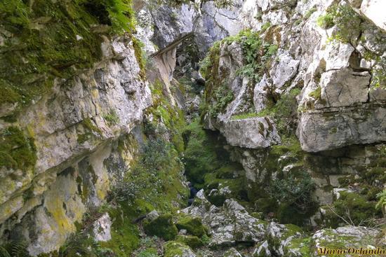Sentiero Valle San Giorgio... - FICUZZA - inserita il 07-Mar-13