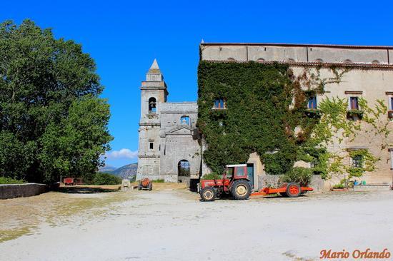 Abbazia di Santa Maria del Bosco . . . - CONTESSA ENTELLINA - inserita il 04-Sep-13
