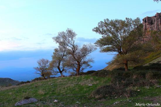 Ai piedi di Montagna Vecchia... - CORLEONE - inserita il 19-Nov-12